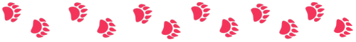 illustrated paw prints for a prehistoric aquatic sloth