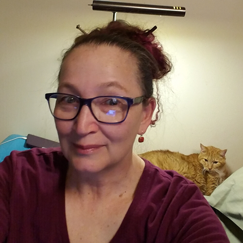 places I write - author being watched by yellow cat