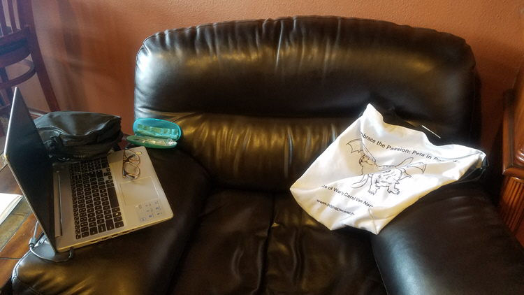 places I write - comfy chair