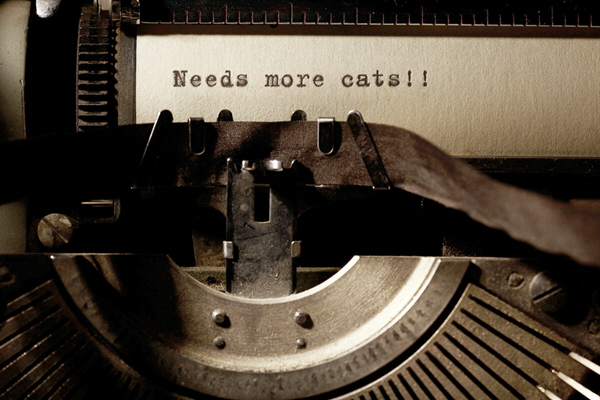 "more ice age shifters this summer - Photo of an old-time typewriter and the words ""needs more cats"""