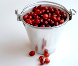 bucket of cranberries and some spices make a go-to recipe for gatherings