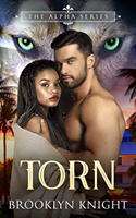 cover for Torn, a paranormal romance by an author of color