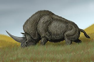Illustration of a Siberian unicorn from the age of megafauna, and bigger than a double-decker bus