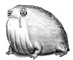 Illustration of an alien pet